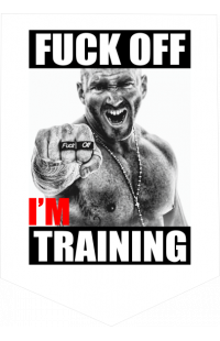 "Вымпел ""F#ck off i'm training"""