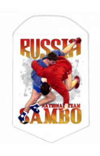 "Вымпел ""Sambo national team"""
